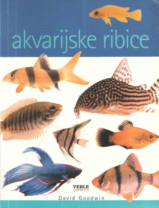 Akvarijske ribice
