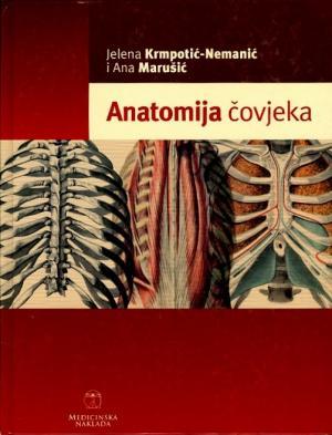 Anatomija čovjeka