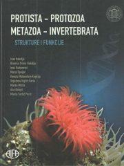 Protista-protoza-metazoa-invertebrata: strukture i funkcije